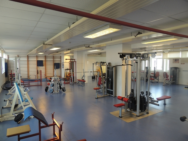 Musculation section sportive athlétisme